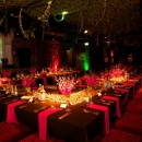 JUNGLE THEMED PARTY - GILGAMESH